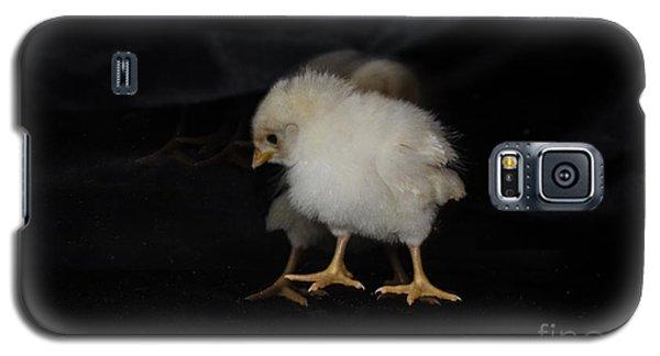 Chicken Dance Galaxy S5 Case