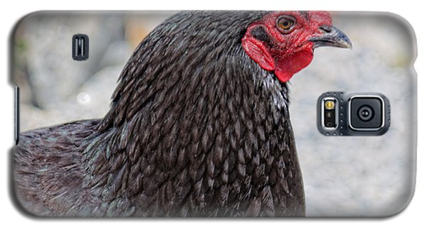 Chicken Profile Galaxy S5 Case by Denyse Duhaime