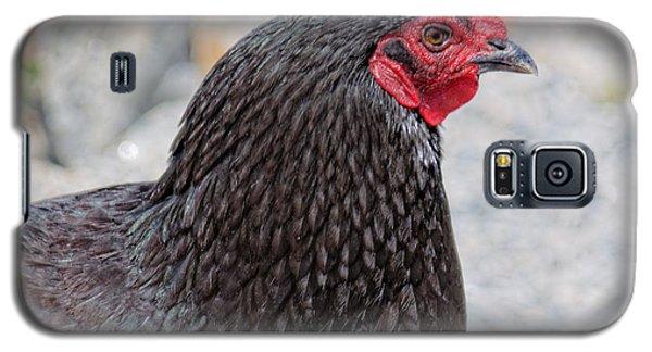 Chicken Profile Galaxy S5 Case