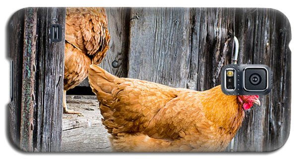 Chickens At The Barn Galaxy S5 Case
