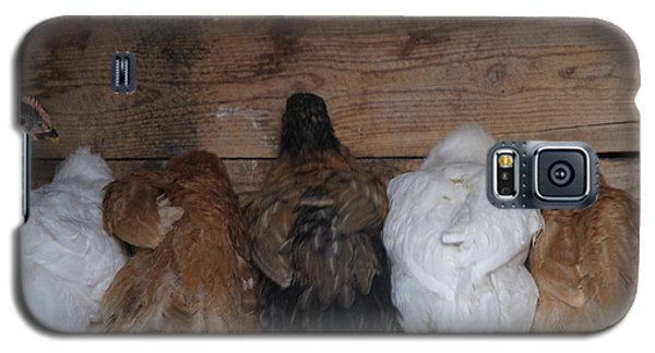 Galaxy S5 Case featuring the photograph Chicks In A Row by Jenessa Rahn