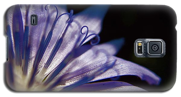 Chicory Galaxy S5 Case by Tim Good