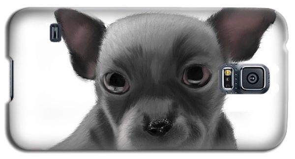 Chihauhau In A Bowl Galaxy S5 Case