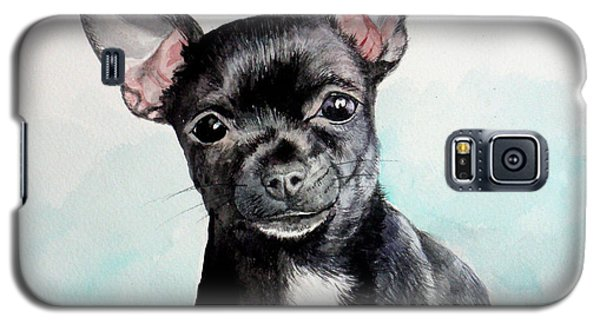Chihuahua Black Galaxy S5 Case