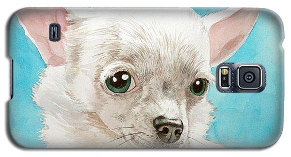 Chihuahua Dog White Galaxy S5 Case