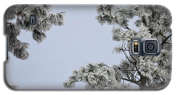 Chill Tree Galaxy S5 Case