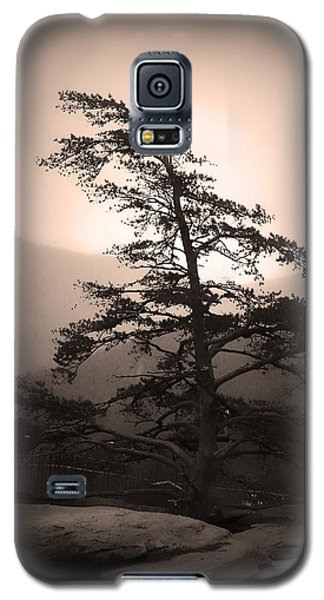 Chimney Rock Lone Tree In Sepia Galaxy S5 Case