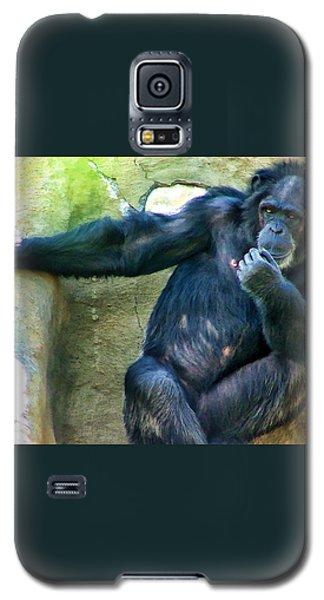 Galaxy S5 Case featuring the photograph Chimp 1 by Dawn Eshelman