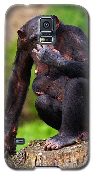 Galaxy S5 Case featuring the photograph Chimp With A Baby On Her Belly  by Nick  Biemans