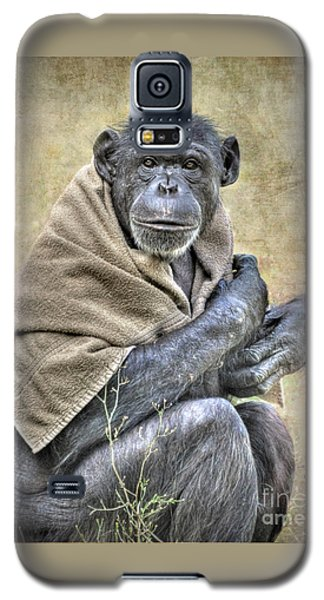 Galaxy S5 Case featuring the photograph Chimpanzee by Savannah Gibbs
