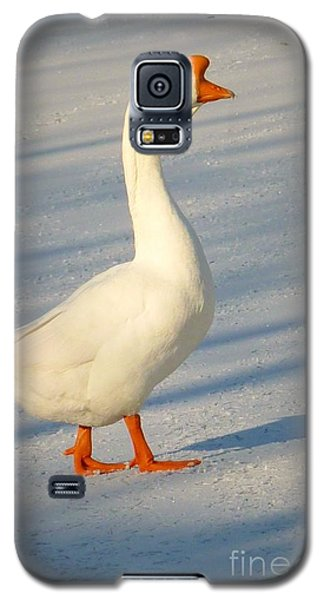 Chinese Goose Winter Galaxy S5 Case