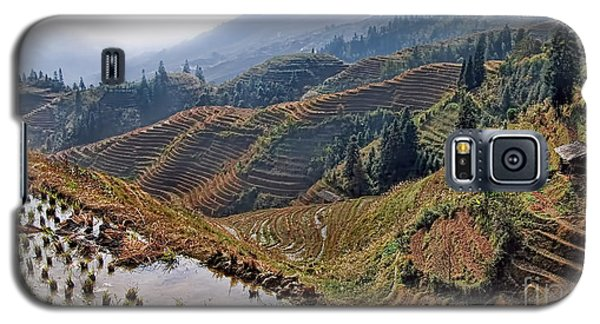 Chinese Rice Terraces Galaxy S5 Case by Alexandra Jordankova