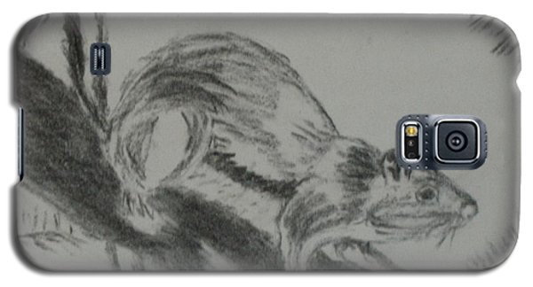 Chipmunk On The Prowl Galaxy S5 Case
