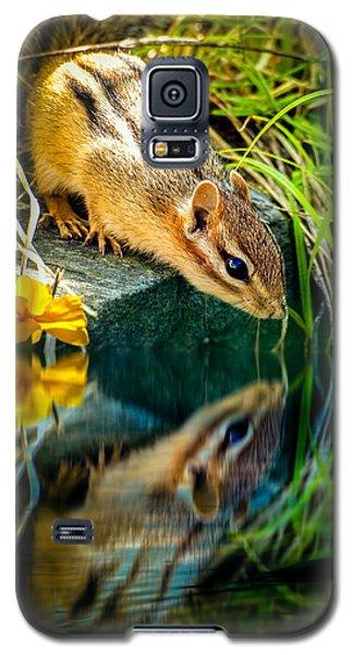 Chipmunk Reflection Galaxy S5 Case