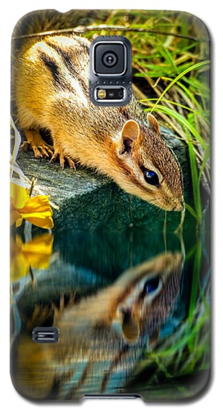 Chipmunk Reflection Galaxy S5 Case