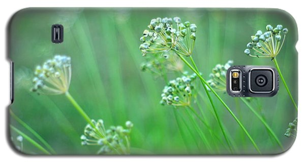 Galaxy S5 Case featuring the photograph Chive Garden by Suzanne Powers
