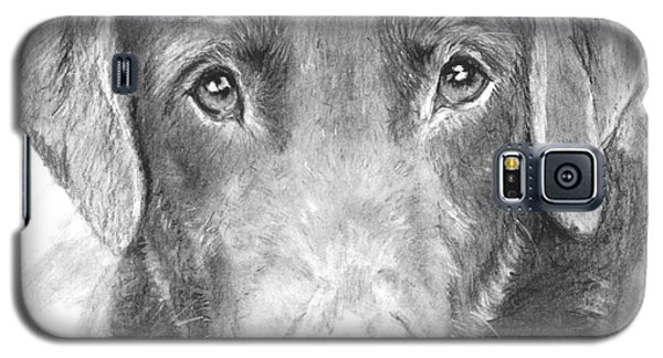 Chocolate Lab Sketched In Charcoal Galaxy S5 Case