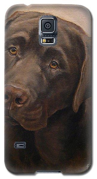 Chocolate Labrador Retriever Portrait Galaxy S5 Case