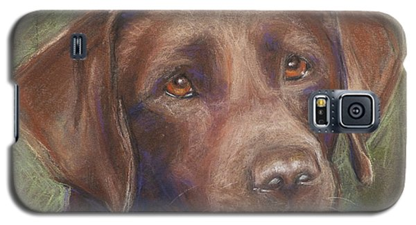 Chocolate Labrador Galaxy S5 Case
