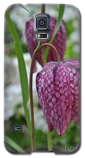 Chocolate Lily Galaxy S5 Case