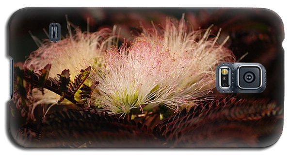 Galaxy S5 Case featuring the photograph Chocolate Mimosa Flower by Mark McReynolds