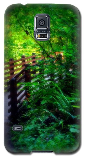 Galaxy S5 Case featuring the photograph Chosen Path by Amanda Eberly-Kudamik