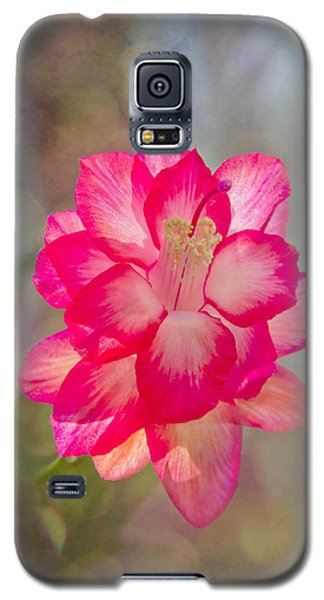 Christmas Cactus Bokeh Galaxy S5 Case