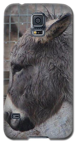 Christmas Donkey Galaxy S5 Case