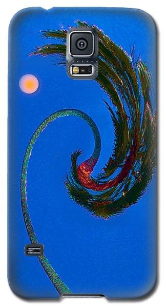 Galaxy S5 Case featuring the photograph Christmas In La by David Klaboe