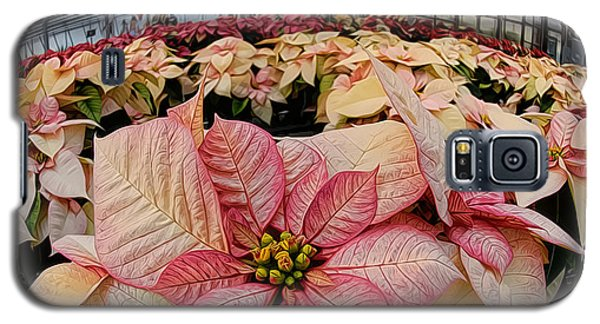 Galaxy S5 Case featuring the photograph Christmas In The Greenhouse by Sami Martin