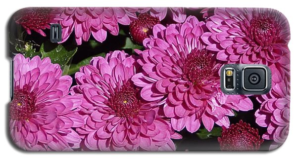 Chrysanthemum 2 Galaxy S5 Case