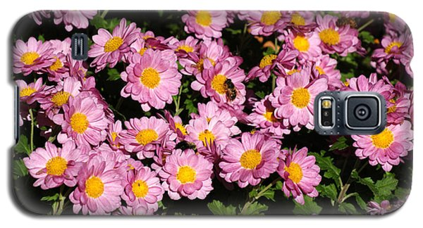 Chrysanthemum Bouquet Galaxy S5 Case by Margie Avellino