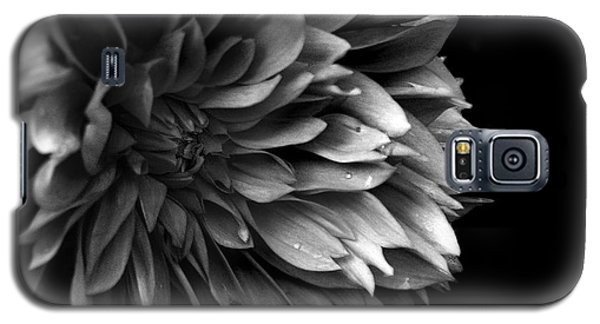 Chrysanthemum In Black And White Galaxy S5 Case