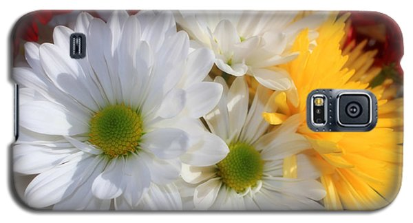 Galaxy S5 Case featuring the photograph Chrysanthemum Punch by Cathy  Beharriell