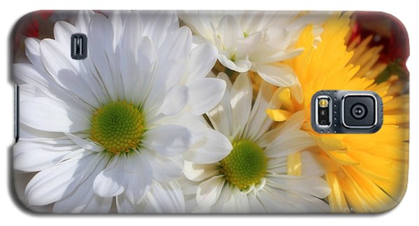 Chrysanthemum Punch Galaxy S5 Case by Cathy  Beharriell