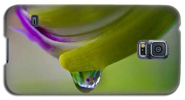 Raindrop Bud Galaxy S5 Case