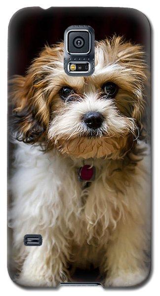 Chumlee Sitting Galaxy S5 Case