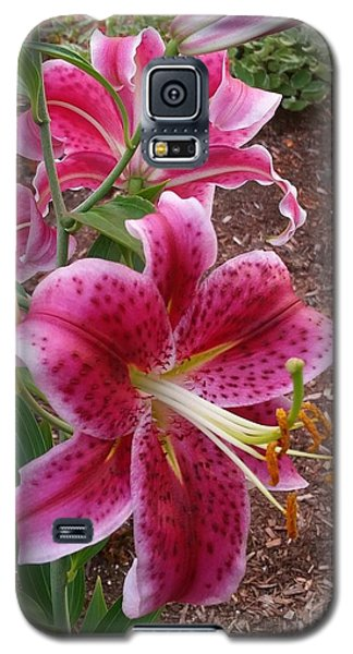 Galaxy S5 Case featuring the photograph Cibuloviny Flower by Rose Wang