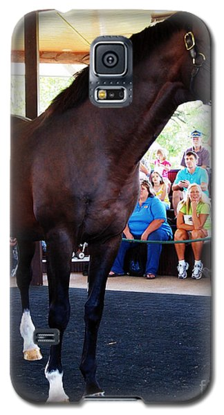 Cigar A Legendary Horse Galaxy S5 Case by Deborah Fay