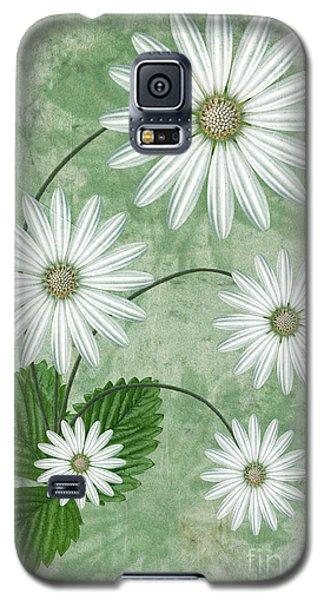 Cinco Galaxy S5 Case by John Edwards