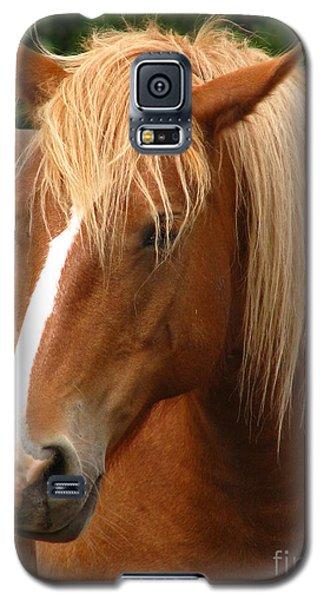 Cinnamon Girl Galaxy S5 Case