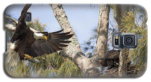 Bald Eagle Nest Galaxy S5 Case