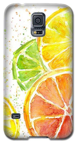 Citrus Fruit Watercolor Galaxy S5 Case