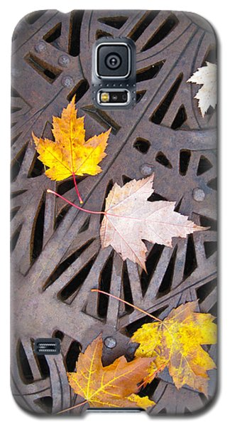 City Meets Nature Galaxy S5 Case