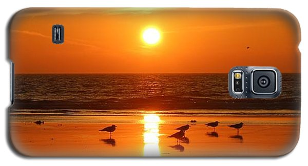 Clam Digging At Sunset - 2 Galaxy S5 Case by Christy Pooschke
