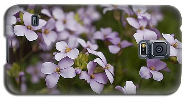 Claude's Aubrieta Galaxy S5 Case by Sandi Mikuse