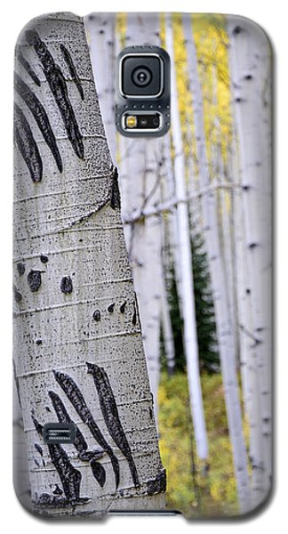 Galaxy S5 Case featuring the photograph Clawed by The Forests Edge Photography - Diane Sandoval