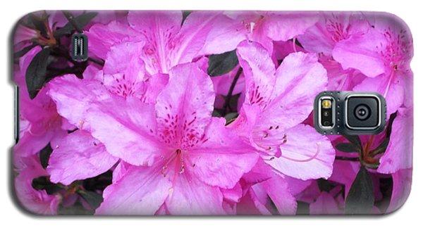 Azaleas Galaxy S5 Case by Donna Dixon