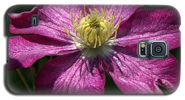 Clematis Aglow Galaxy S5 Case