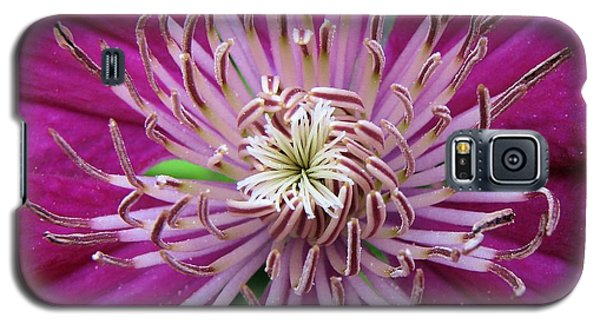Clematis Heart Galaxy S5 Case